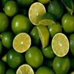 شرکت ساخت لیمو